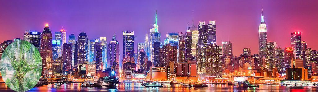 hình nên trái dừa và thành phố hiện đại